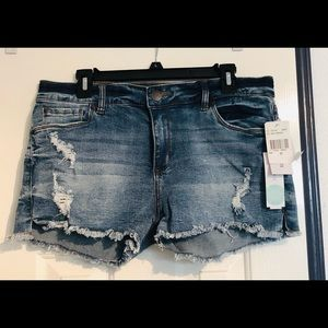 NWT! STS Blue Eleonora Distressed Fray Hem Shorts
